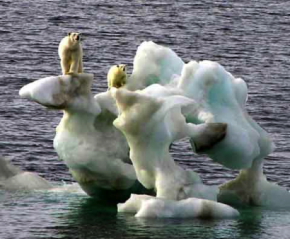 The Global Warming Hoax – A Convenient Excuse for a New World Order